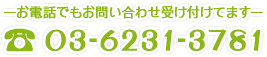 03-6231-3781
